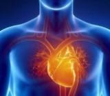 Простой способ сохранить здоровье сердца и сосудов, - ученые