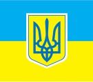 Украинцев ждет 45 дней частичной мобилизации