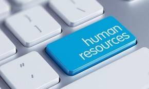 5 преимуществ изучения HR-менеджмента