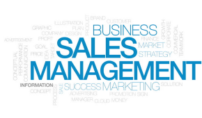 Тренинг по продажам в ИТ: как выбрать действительно стоящий?