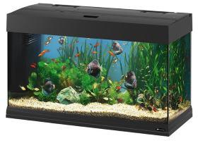 Чем можно склеить аквариум?