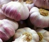 Производитель чеснока на Херсонщине получил авторское свидетельство на новый сорт