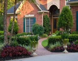 Декоративная красота на вашей даче: тонкости выращивания