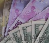 Объем наличного рынка валюты в Украине оценили в $30,8 млрд за год