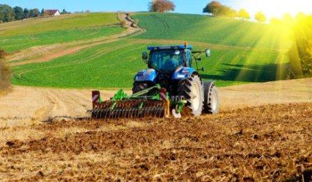 Рынок земли в Украине: эксперты рассказали, сколько будет стоить гектар