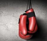 Гвоздик проведет первую защиту титула WBC при полных трибунах