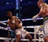 В одну калитку: Усик победил Джошуа единогласным решением судей
